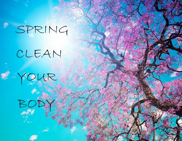 spring_clean_body